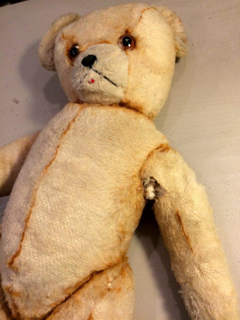 un-ours-en-ville-nounours-en-peril